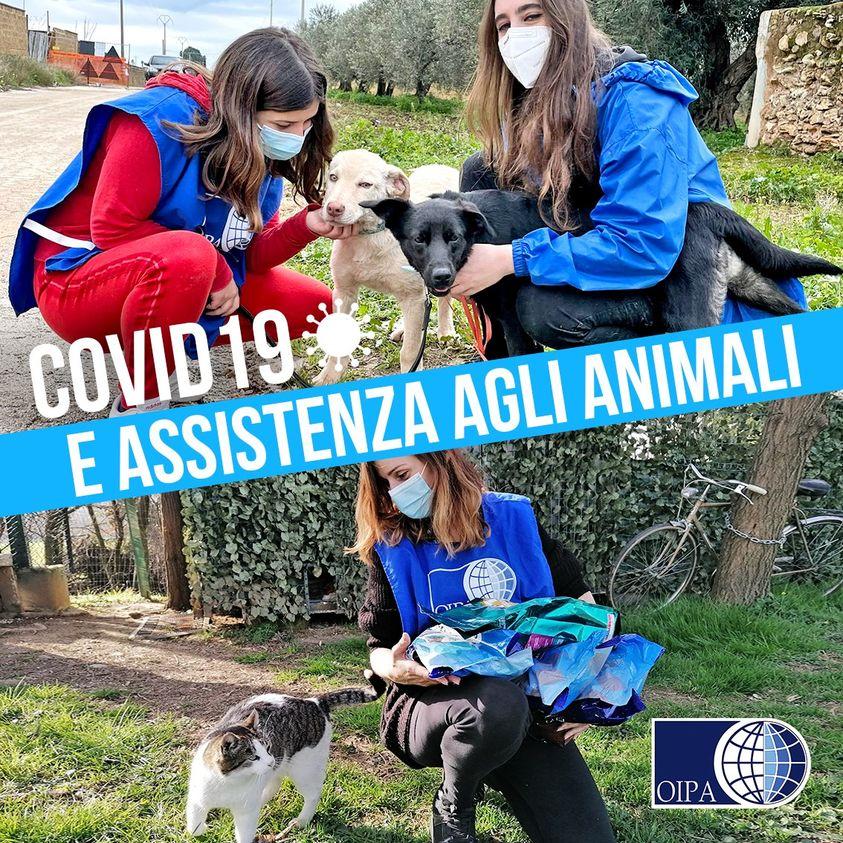 COVID19: OIPA, consigli utili ai volontari.