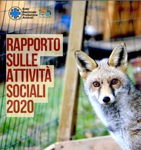 Rapporto Annuale ENPA: 75 mila animali aiutati.